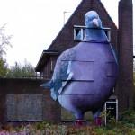 La maison pigeon