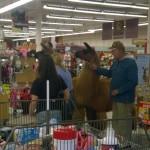 Les courses avec son lama