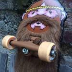Skate à barbe
