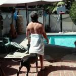 Un chien curieux