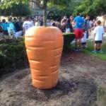Pot de fleur carotte