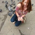 Attaque de pigeon