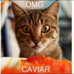 CAVIAR!!!!